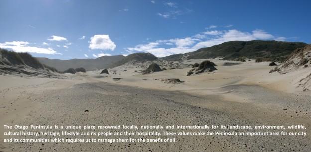 Sandfly Panorama